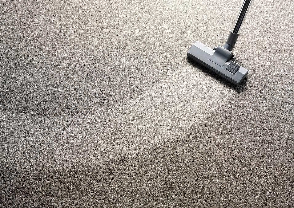 No Other Christchurch Carpet Cleaner Can Beat One Of Sun Carpet Cleaning