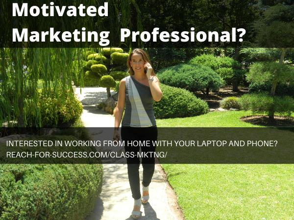 Opportunity for Motivated Marketing Professionals - Work From Anywhere