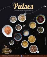 Pulses / Lentils Importers in Auckland New Zealand - Kashish Food