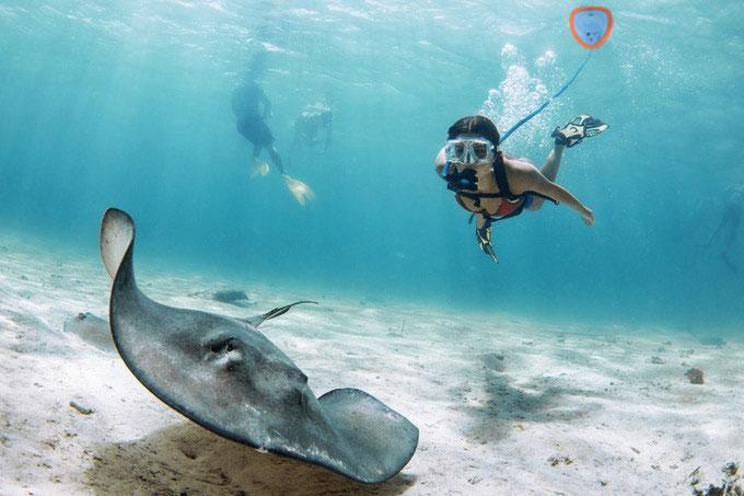 Underwater Breathing Diving Snorkel Deep Diving Ventilator 40000mAh