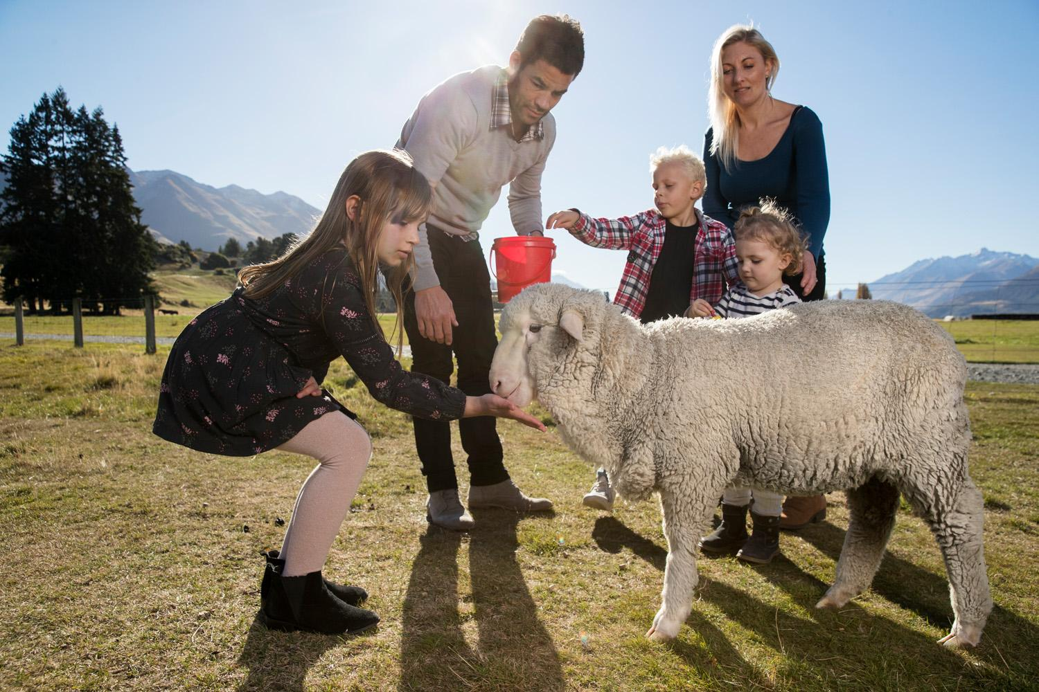 Want to Get Unforgettable Farm Experience NZ! Call Us