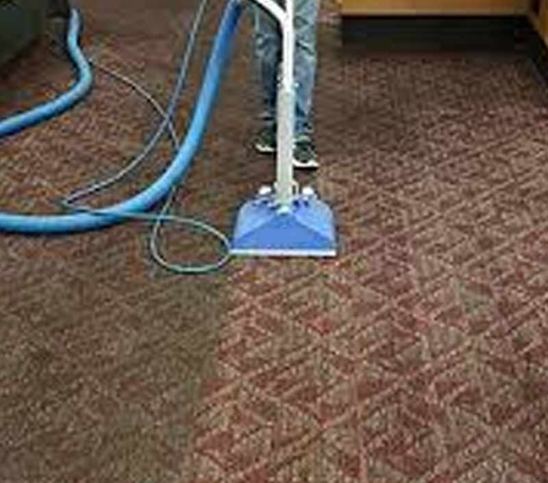 Spotless Carpet Steam Cleaning Wyndham Media