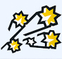 Southern Stars Logo