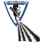 Mt Wellington Panthers Logo