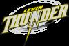 Levin Thunder Logo