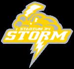 Storm Yellow Logo