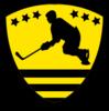 NZ All-Stars Logo