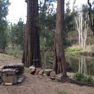 Riverside Platypus Camping NOT TAKING BOOKINGS