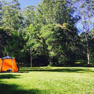 Arcadia Camping Ground  61 Pointers Rd, Martinsville NSW 2265, Australia