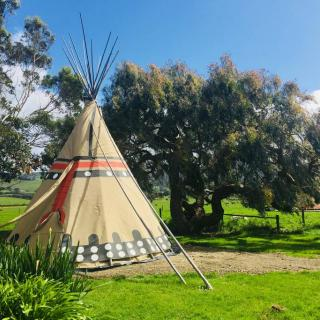 Native American Tipi With Electricity