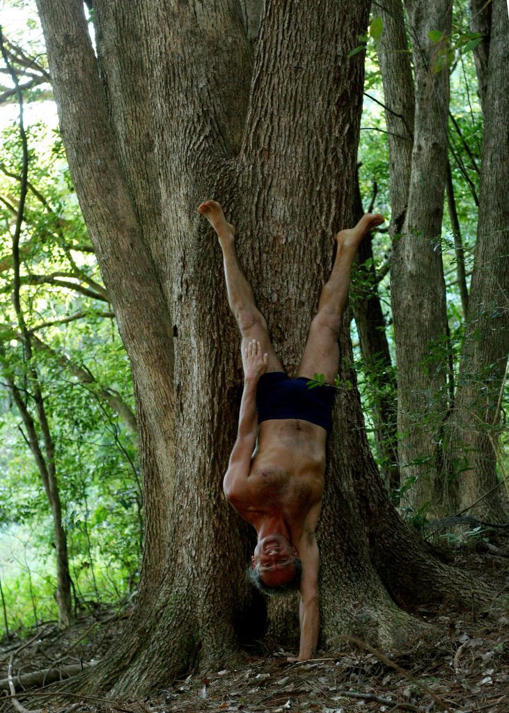 Simon Borg-Olivier in Eka Hasta Adho Mukha Vrksasana, Photo Courtesy Donatella Parisini