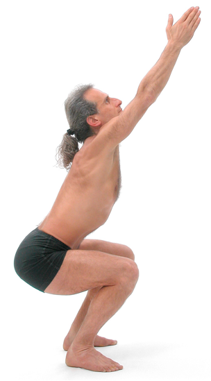 Figure 9: Utkatasana (powerful chair pose): To generate janu bandha i.e. the simultaneous tensing of front thigh muscles (quadriceps) and rear thigh muscles (hamstrings) start with the legs straight and 'pull up the knee-caps' then -- without losing the sensation of pulling up the knee caps – bend the knee slightly to utkatasana (powerful chair pose) using the hamstrings.