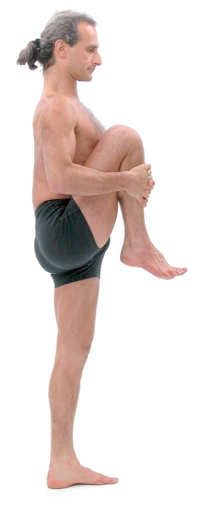 Figure 10: Utthita pavanmuktasana (wind releasing pose): This posture should be started with the standing leg slightly bent (flexed) at the knee so the front thigh muscles (quadriceps) are active. Lean the trunk forward and pull the leg that's in the air as close to the trunk as possible. Keep the leg and the trunk as close together as possible then lean backwards with trunk and try to straighten the standing leg. This exercise usually causes the rear thigh muscles (hamstrings) to become active at the same time as the front thigh muscles (quadriceps) and hence generates janu bandha.