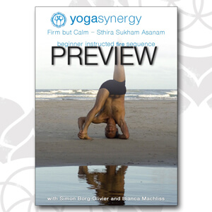 Yoga Synergy Beginner Fire Sequence with Simon Borg-Olivier