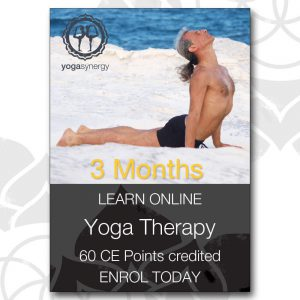 Yoga Therapy Online Course 3 months