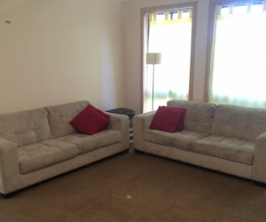 Two 3 Seater Couches PLUS 4 Cushions
