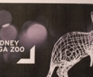 Taronga Zoo- Vivid Sky Safari blue pass tickets x2 for Sat May 28 please