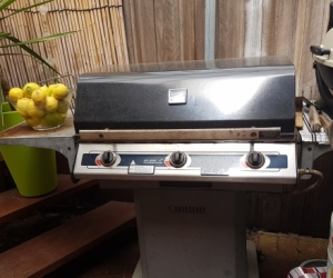 Working large gas bbq