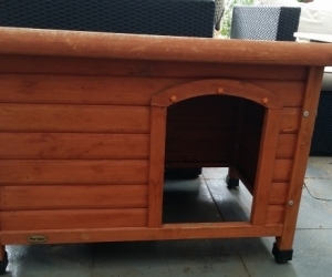 Great dog kennel