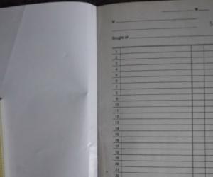 NO.8 DOCKET BOOK
