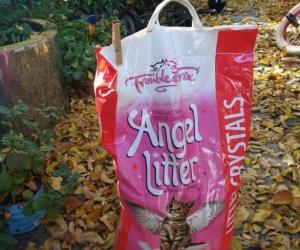 Large Bag of Kitty Litter