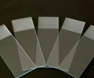 Glass Microscope slides