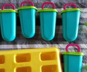 Tupperware Icy Pole Moulds
