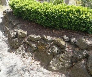Free Honeycomb Rocks