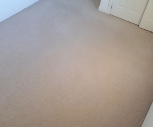 Carpet and underlay for 1 room