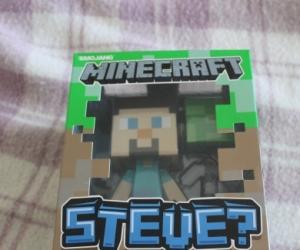 Minecraft Steve? Figure