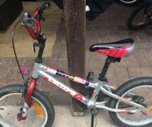 Bike Stoller