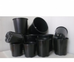 Looking for a quantity of 125mm plastic pots for plants