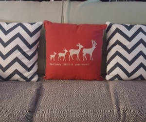 3 Cushions in excellent condition.