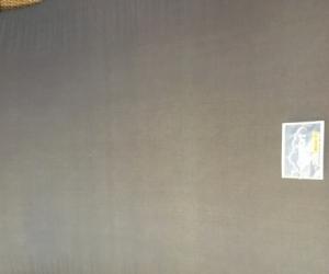 Large Foam Mattress (Thin)