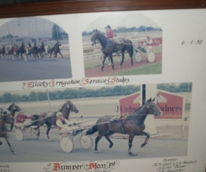 9 Framed Horse Racing Photo's