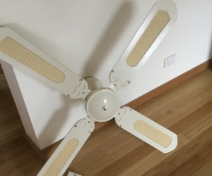 Ceiling Fan and Control