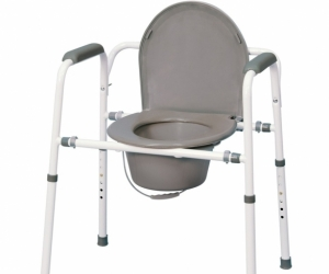 Commode - seat with toilet bowl