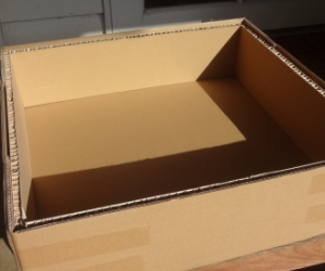 cardboard box, useful as an indoor petbed?
