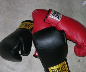 Looking  for Boxing Gloves and Gear