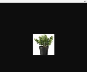 Pots/planters