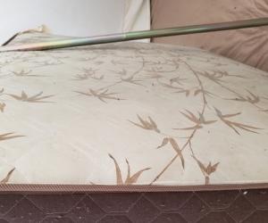 Free double mattress!