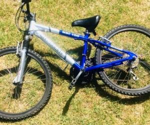 Kid's blue & silver bike
