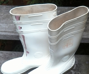 white wellies (large)