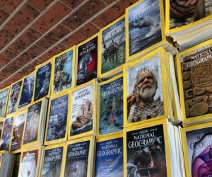 600+ National Geographic Magazines 1969 - 2011