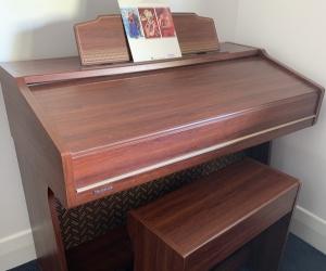 Organ & stool