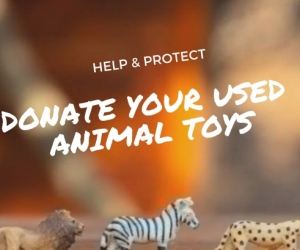 Wanted: Donate unwanted small plastic animal toys/figurines