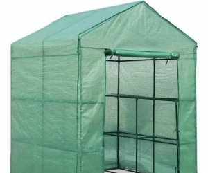 Greenhouse or anything to help protect early plants.