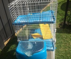 Guinea pig cage.