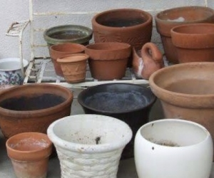 Large concrete / terra-cotta pots