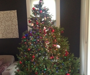Christmas tree - 225 cm (7.5 feet) artificial Frazier Fir